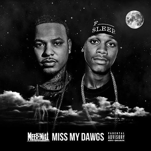 meek-mill-miss-my-dawgs-500x500