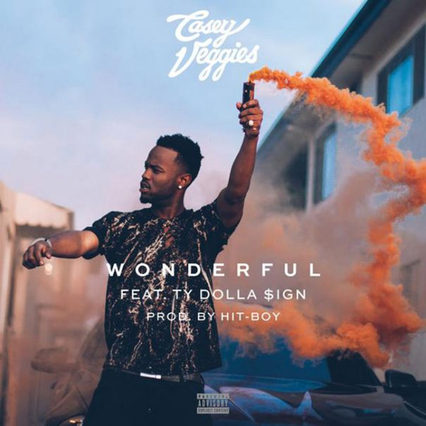casey-veggies-wonderful-cover