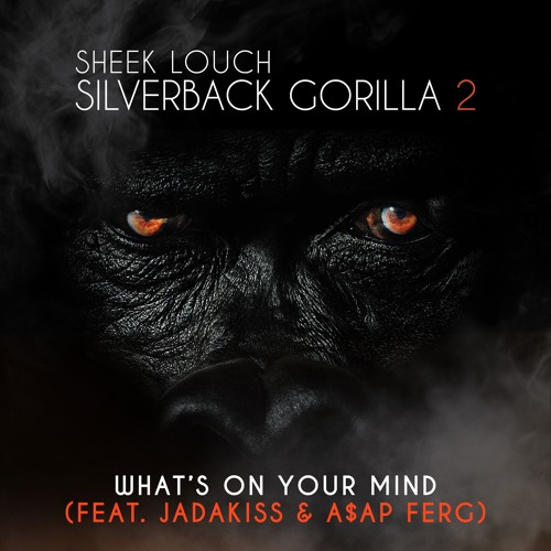sheek-louch-whats-on-your-mind