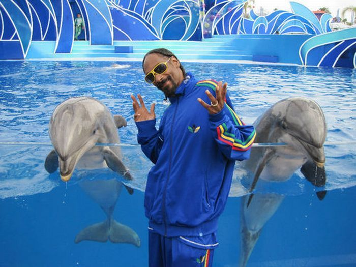 snoop-dogg-dolfin